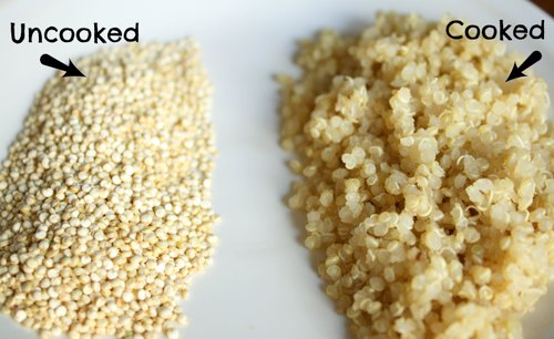 Hạt Quinoa sống và chín