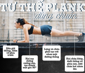 Video hướng dẫn tập plank giảm mỡ bụng đúng cách